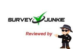 Survey-Junkie-Is-A-Scam-Review-Bare-Naked