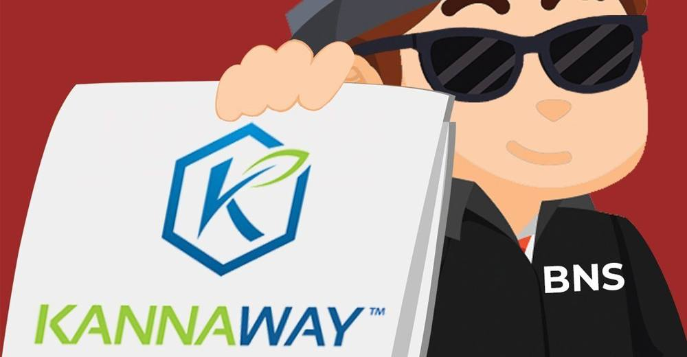 Kannaway-Review-Scam-Or-Legit