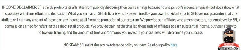 Strong Future Internation Scam Income Disclaimer