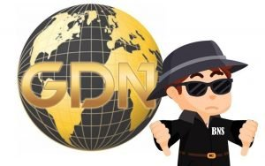 Global Dream Network Review