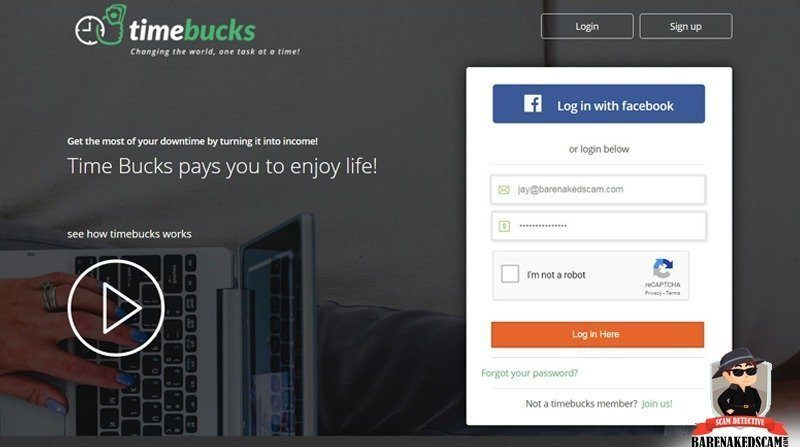Home Page TimeBucks