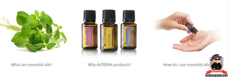 What To Know Before Buying Essential Oils