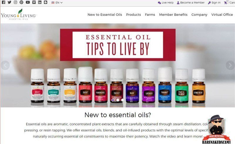Young Living Home Page