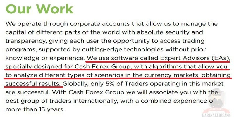 How-Cash-FX-Group-Work